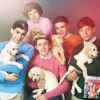 onedirection-puppies